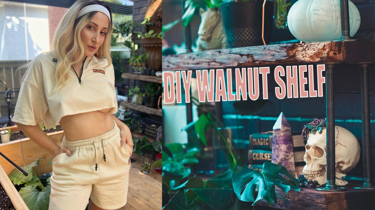 wolf-of-the-wild-diy-walnut-shel